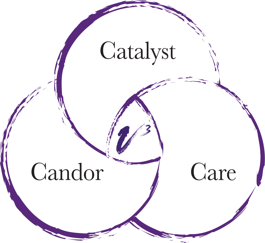 executive coaching company vandaveer group uses an approach that includes catalyst, candor and care as the the basic foundations of its processes