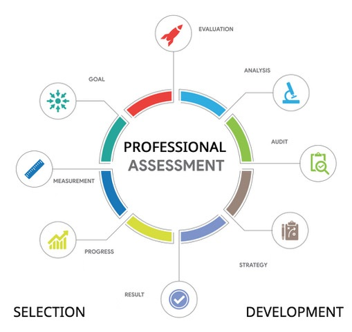 professional executive assessment examines many aspects for both leader selection and leader development